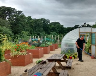 ravens craig walled garden in action