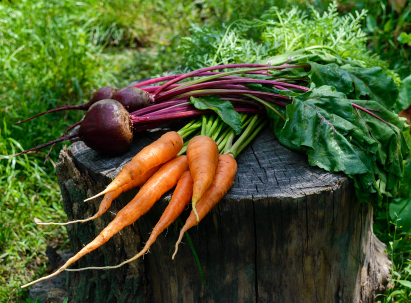 carrots and beetroot