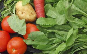 salad veg