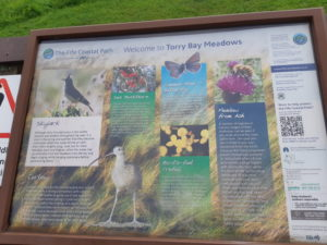Torry Bay Meadows