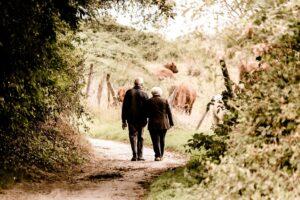 winter walking festival - couple walking through woods