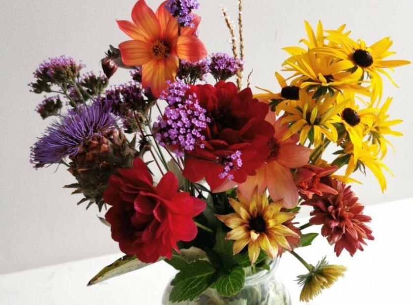 Flowers from my Kirkcaldy garden