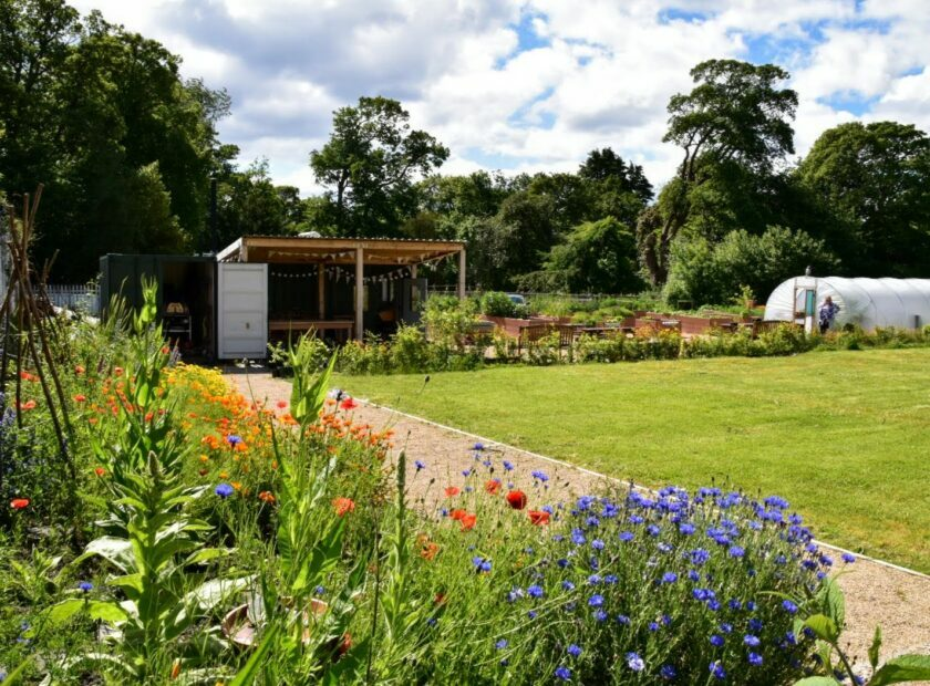 ravenscraig walled garden - climate friendly gardening