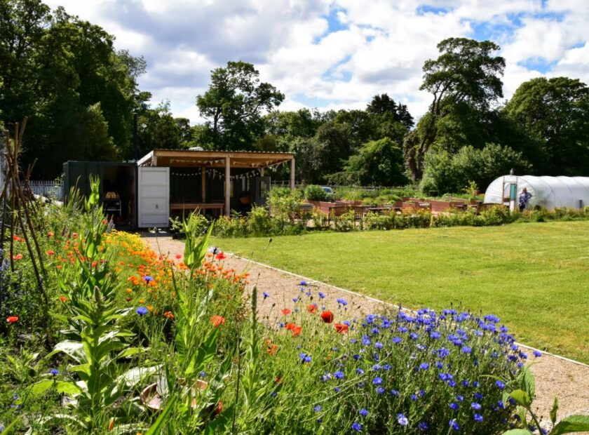 ravenscraig walled garden - climate friendly gardening